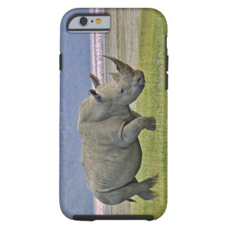 White Rhinoceros and distant Lesser Flamingos, Tough iPhone 6 Case
