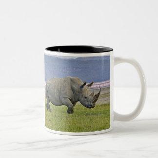 White Rhinoceros and distant Lesser Flamingos, Two-Tone Coffee Mug
