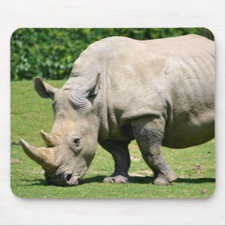White rhinoceros grazing grass mouse mat