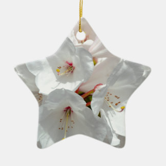 White rhododendron flowers in spring christmas ornament