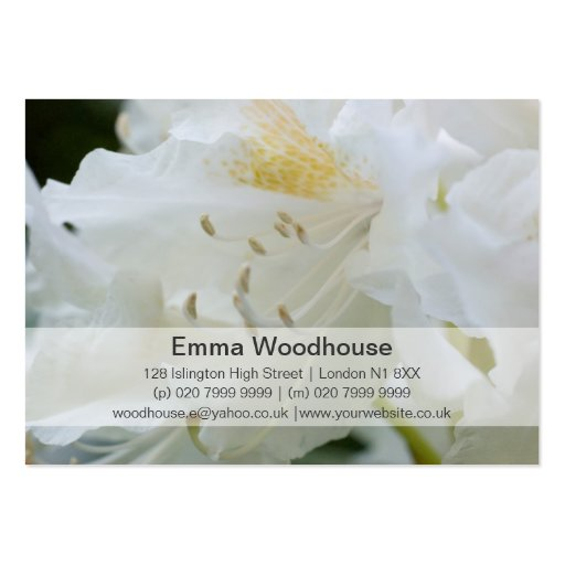 White Rhododendron | Weisse Rhododendron Pack Of Chubby Business Cards
