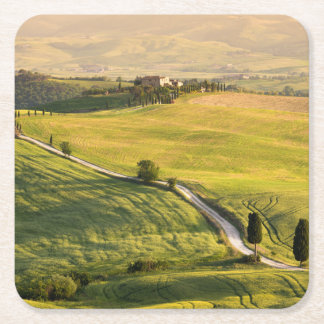 White road in Tuscany landscape coaster