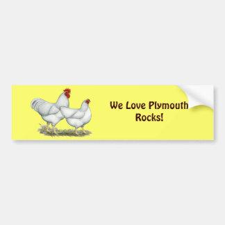 White Rock Chickens Car Bumper Sticker