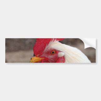 White Rooster Bumper Sticker