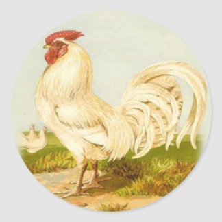 White Rooster Stickers