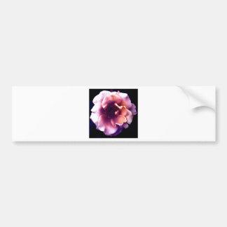 white rose bumper sticker