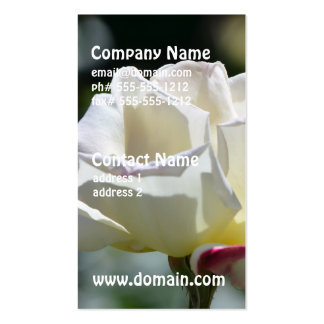White Rose Pack Of Standard Business Cards