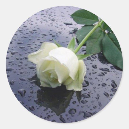 White Rose Classic Round Sticker