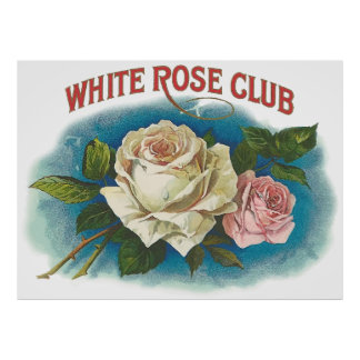 White Rose Club Poster