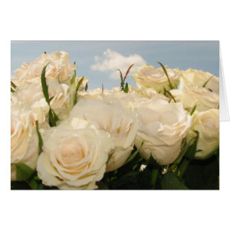 White rose delight card