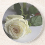 White rose drink coaster