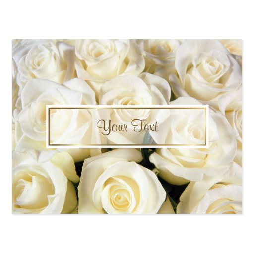 White Rose Elegance Template Post Cards