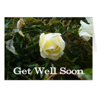 White Rose Get Well Card