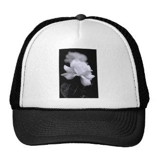 White Rose Hats
