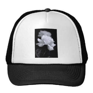 White Rose Hats