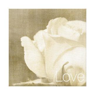 White Rose Love Canvas Print