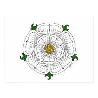 White Rose of York Postcard