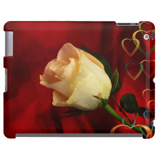 White rose on red background