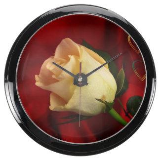 White rose on red background fish tank clocks