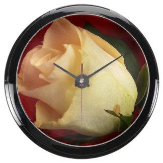 White rose on red background aqua clocks