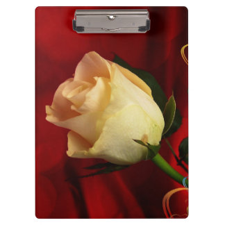 White rose on red background clipboard