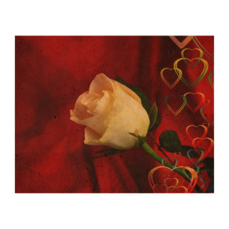 White rose on red background cork paper