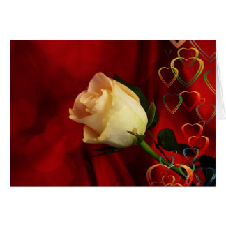White rose on red background greeting card