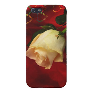 White rose on red background covers for iPhone 5