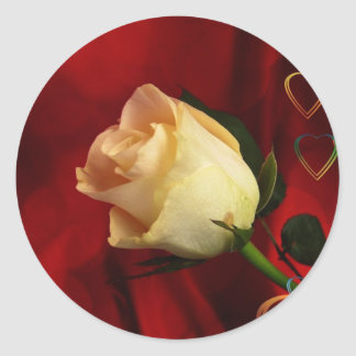 White rose on red background classic round sticker