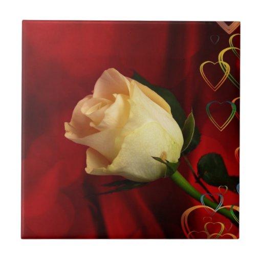 White rose on red background tiles