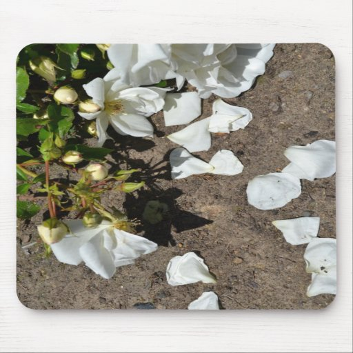 White Rose Petals Mouse Pads