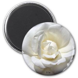 White Rose, S Cyr 6 Cm Round Magnet