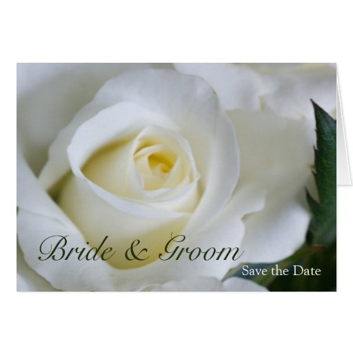 White Rose • Save the Date Card