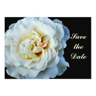 White Rose Save the Date Card 13 Cm X 18 Cm Invitation Card
