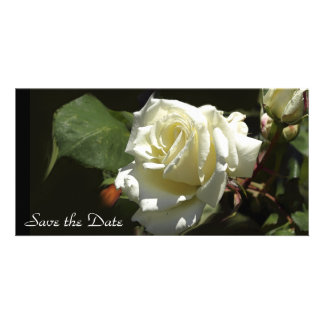 White Rose Save the Date Photo Card