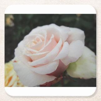 White Rose Square Paper Coaster