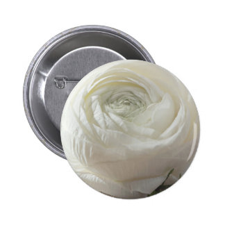 White Rose Standard, 2¼ Inch Round Button