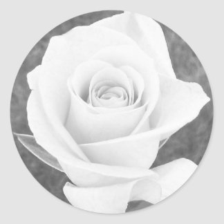 White Rose Stickers