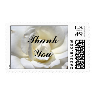 White Rose, Thank You Postage Stamp
