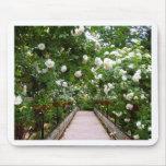 White rose walkway mousepads