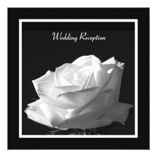 White Rose Wedding Reception Only Invitation