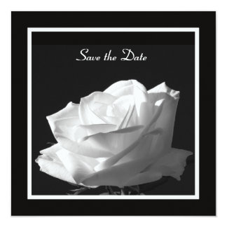 White Rose Wedding Save the Date Invite