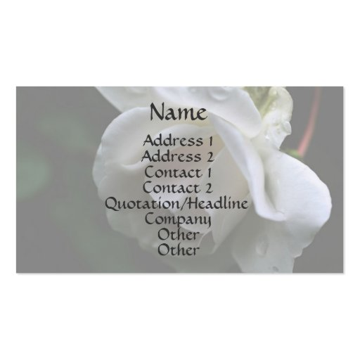 White Rosebud Raindrops Floral Business Card