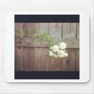 White Roses on a Fence Mousepads