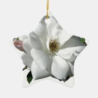 White Roses Party Shower Wedding Blossoms Destiny Ceramic Star Decoration