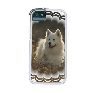 White Samoyed Dog Case For iPhone 5