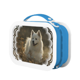White Samoyed Dog Yubo Lunch Box