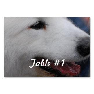 White Samoyed Dog Table Cards