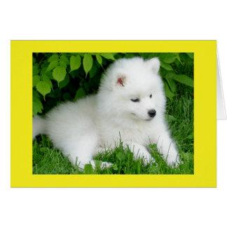 White Samoyed Puppy Dog Blank Note Card