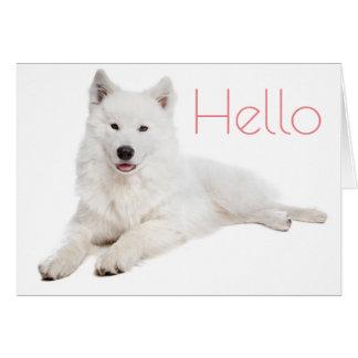 White Samoyed Puppy Dog - Hello, Thinking Of You Greeting Card